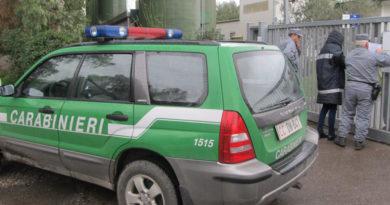 Carabinieri forestali Nipaf il corriere della provincia