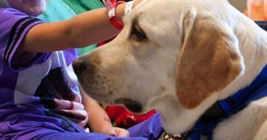 Pet Therapy: primi due appuntamenti a Frosinone e Alatri