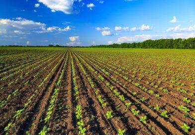 Agricoltura biologica: un corso della Comunità montana