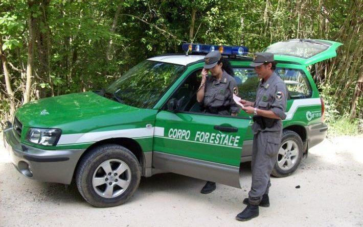 corpo forestale stato frosinone il corriere della provincia