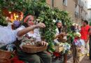 'Vino in festa' a Paliano: in scena la XXII edizione