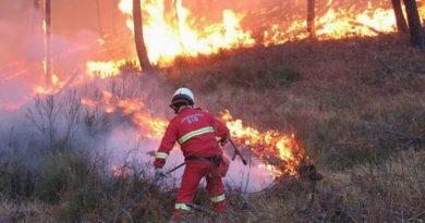 incendio vigili fuoco il corriere della provincia
