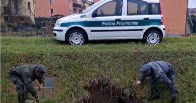 polizia provinciale frosinone il corriere della provincia