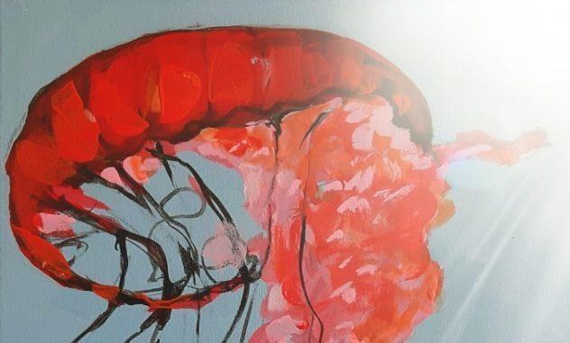rocco alonzi meduse il corriere della provincia
