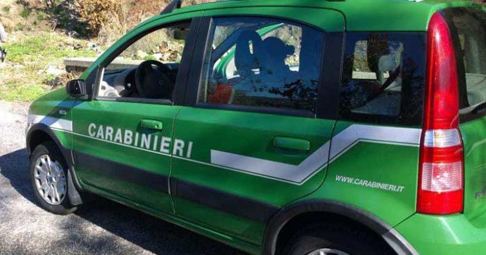 carabinieri forestali frosinone il corriere della provincia
