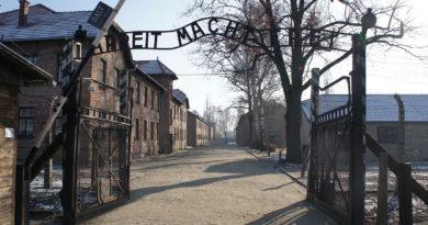 campo concentramento L'ingresso del campo di concentramento auschwitz il corriere della provincia