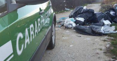 rifiuti abbandonati carabinieri forestali il corriere della provincia