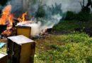 Brucia mobili nel giardino condominiale: denunciato. E 41 multati per le misure anti-Covid