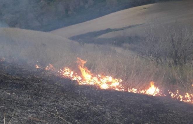 incendio sterpaglie il corriere della provincia