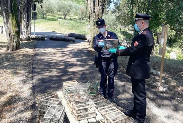 volatili carabinieri il corriere della provincia