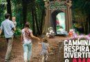 Cassino, torna il 'Bosco delle Favole': si parte il 3 luglio