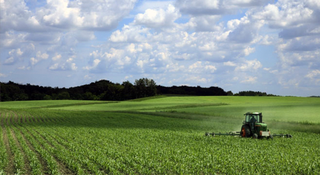 terreni agricoli agricoltura Frosinone Ciociaria Regione Lazio Enrica Onorati attualità ambiente PLT Agea