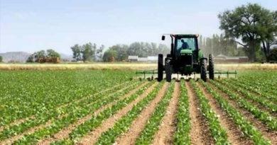 attualità agricoltura terreni agricoli rivendite agrarie Ciociaria Frosinone Cassino Fabio Manara Compag evento convegno mercato