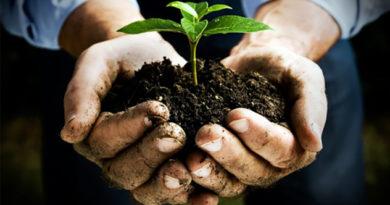 """economia Nicola Zingaretti Regione Lazio Enrica Onorati Frosinone Ciociaria aziende agricoltura """"Programma di Sviluppo Rurale del Lazio"""" lavoro fondi"""