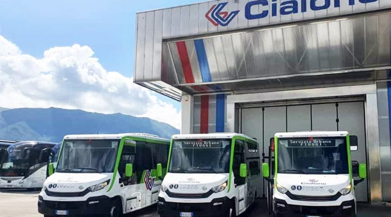 cialone bus